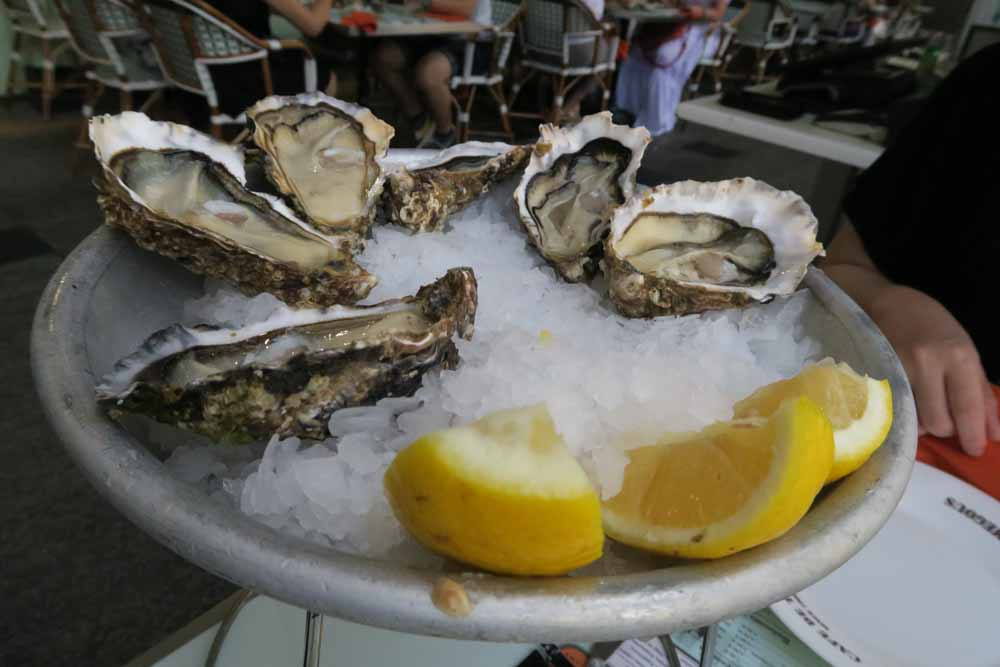 Le Café de Turinおかわり生牡蠣