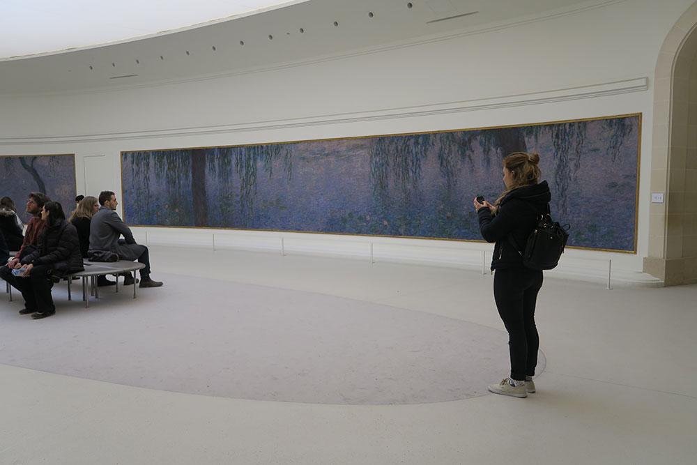 モネの睡蓮05 オランジュリー美術館