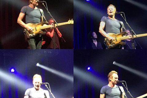 Sting_live_in_japan_2017_06_08-1