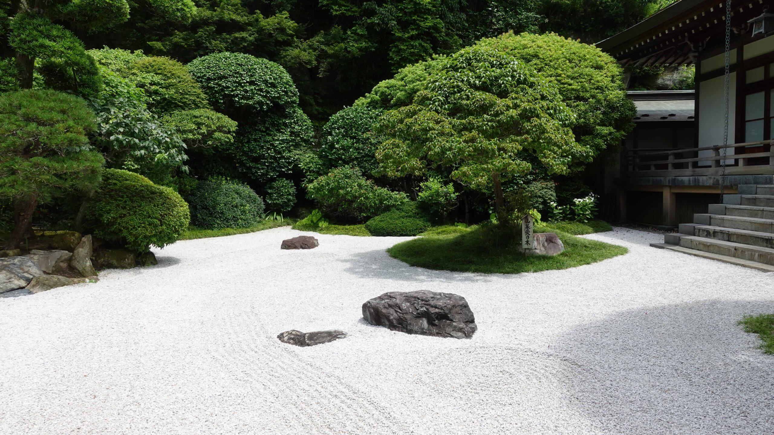 報国寺 本堂 庭園01